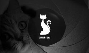 Logo para fotógrafo – Chafin Films