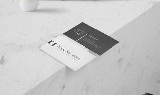 Arquiteta Francine Aires – Logo